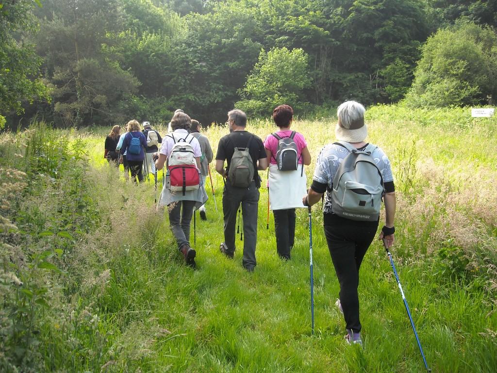 Les randonneurs nordiques découvrent la « Réserve de la Sittelle » à Saint-Laurent-de-Brevedent…